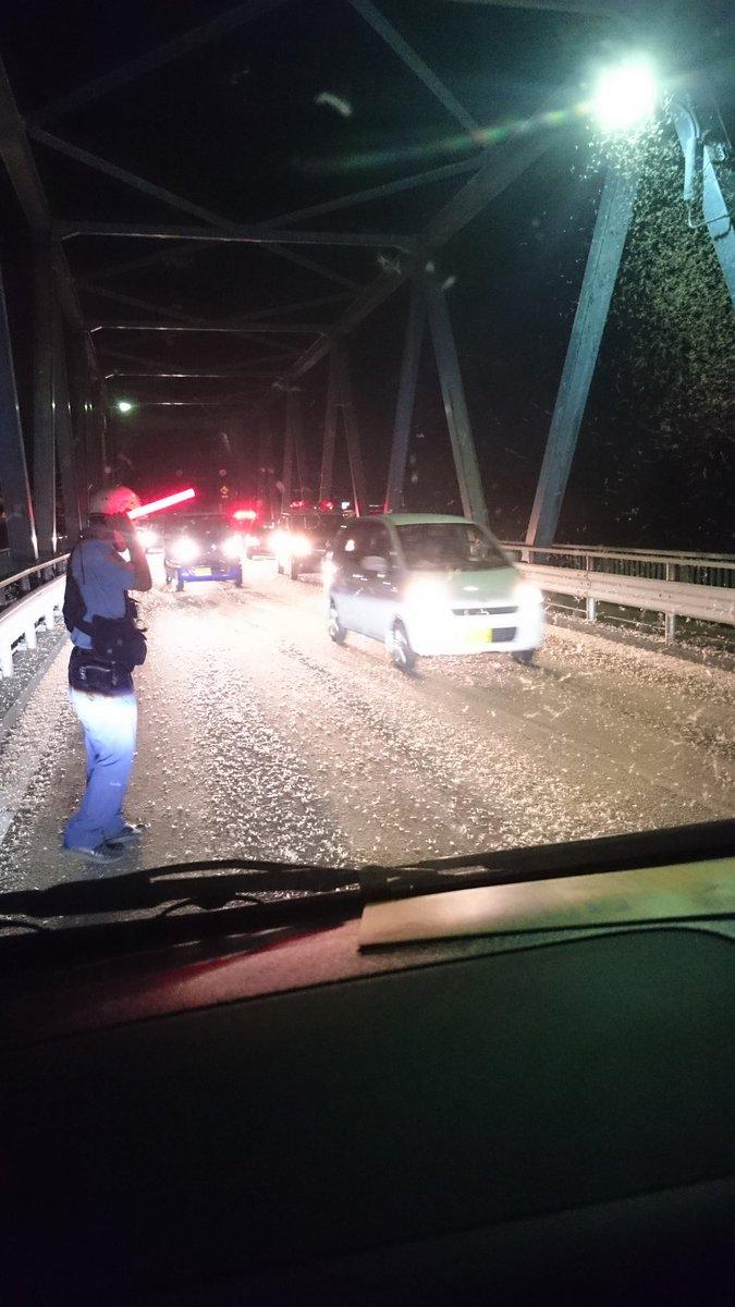 【驚愕】愛岐大橋などでカゲロウが大量発生し、一時通行止め!降り積もった死骸にスリップし交通事故も!
