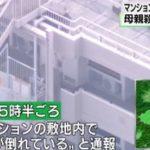 【事件】さいたま市大宮区大成町のマンションで、男子高校生が母親を刺殺した後に飛び降り自殺か!?