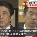 【一心同体】安倍総理と日本維新の会の橋下氏が会談!カジノや万博などで協力を確認!「来年も共に頑張りましょう!」