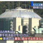 【ウソだろ】もんじゅ廃炉を政府が正式決定したものの、その「方法」が全く無いことが判明!「ナトリウムを取り除く手段が見当たらない」