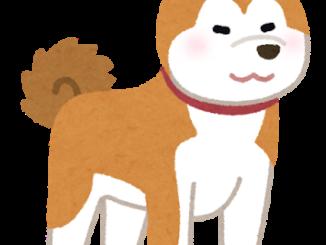 秋田犬イメージ
