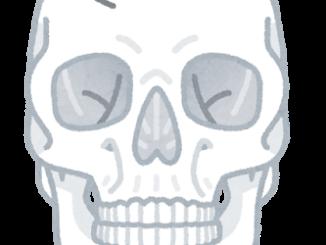 頭蓋骨イメージ
