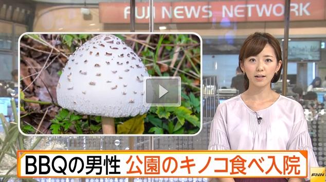 【気をつけて】名古屋市港区荒子川公園で毒キノコのオオシロカラカサタケを採取、BBQで焼いて食べた男性3人が食中毒で入院!