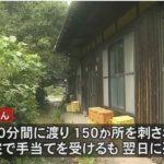 【怖すぎる…】愛媛県大洲市で、車椅子の高齢女性がスズメバチに50分間襲われ死亡!身体の自由が利かない中、全身150か所刺され続ける!
