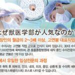 【何これ】加計学園獣医学部の韓国人募集の資料が流出!「一般労働者の2~3倍の高収入」…お金目当ての学生を釣る計画か!