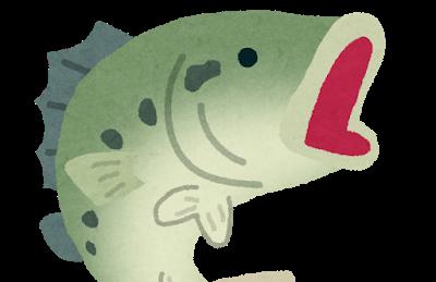 【豆知識】「跳梁跋扈(ちょうりょうばっこ)」って何!?意味や語源、使い方などを紹介!