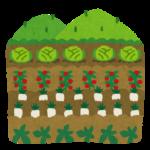【ヤバイ】安倍政権、農家による種苗の自家増殖を原則禁止へ!「優良品種の海外流出を食い止める目的」と説明するも、TPPや種子法廃止とリンクで外資優遇の疑いも!