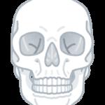 【ヒィ】鹿児島市甲南高校で教材用に使用していた頭蓋骨、本物の人骨だった!生徒が美術の授業でデッサン!市内の別の高校でも人の頭蓋骨が見つかる!