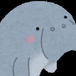 【ショック広がる】沖縄・今帰仁村でジュゴンの亡骸が見つかる…辺野古建設の影響疑う声も!近年生存確認されていた「希少な1頭」か!