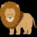 【可哀想】多摩動物公園の雄ライオンが、雌ライオンに集団で襲われるトラブル!傷だらけの痛ましい姿に、心配の声相次ぐ!