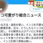 【狂ってる】飼っているインコの「虐待動画」を大量投稿!坂野嘉彦容疑者(34)を逮捕!洗面所で溺れさせ、ライターを押しつけ、ピアッサーで穴を開けるなど…