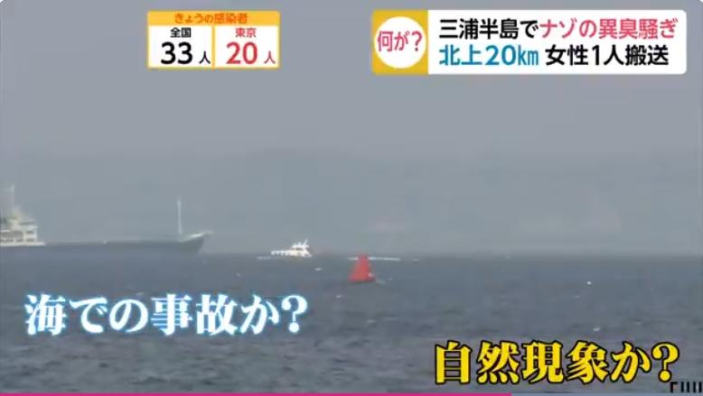 【不気味】神奈川・三浦半島で謎の異臭が広範囲に蔓延!→警察・消防が調査するも一切原因不明!「人為説」と「自然現象説」が飛び交い「大地震の予兆」を疑う声も!